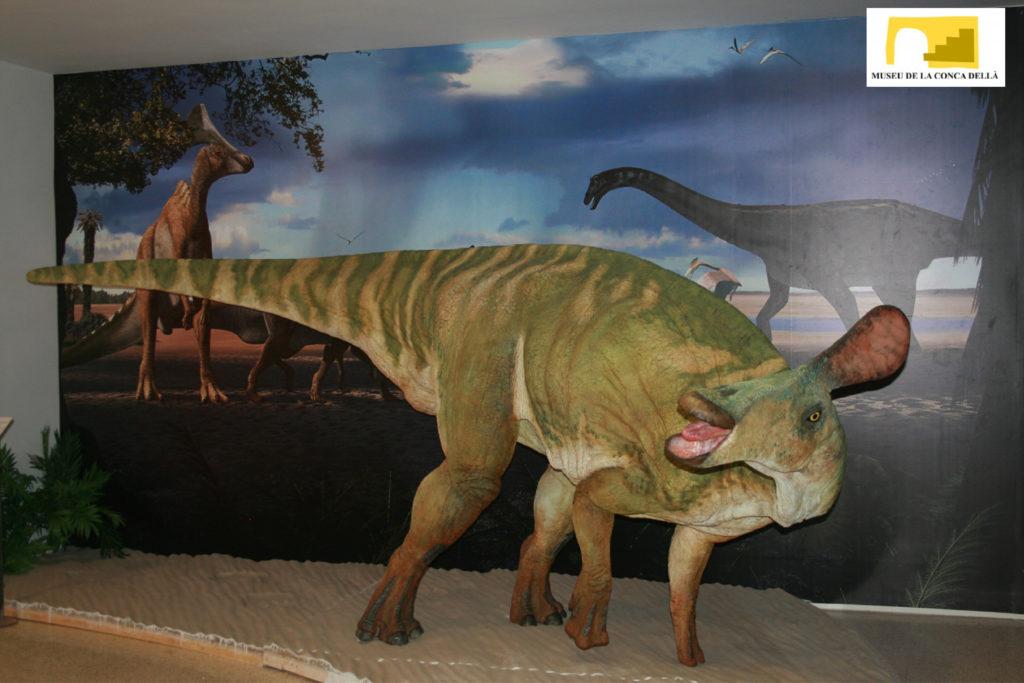 Museu Conca Dellà - sala dinosaures-01